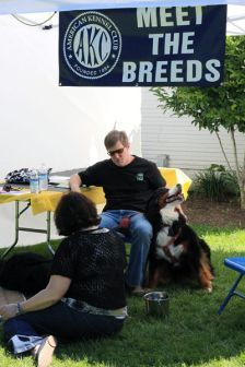 Our recently added MEET THE BREEDS!